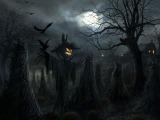Happy Halloween! Get thebrief
